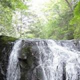 自然が創り出した芸術「嬬恋」の写真