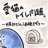 『🐈愛猫トイレ問題〜不意討ちうんこ目視ヤダヨ〜🐈』の画像