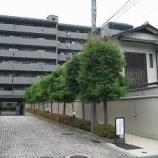 『★売買★10/30コスモ二条城前 分譲中古マンション』の画像