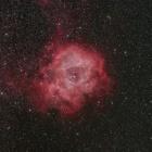 『タカハシFSQ-130EDファーストライト第1弾(バラ星雲)』の画像