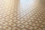 私部の青年の家に入ろうとしたら床一面が目玉焼きっぽくてもうそれしか見えない!