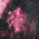 『はくちょう座のペリカン星雲』の画像