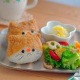 『ハチワレにゃんこのいなり寿司』の画像