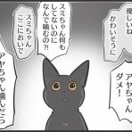 おそらくその平凡こそ幸せ 猫と家族の日常絵日記