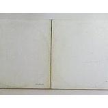 『ホワイトアルバム40周年』の画像