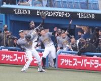 阪神マルテ(29)年俸7千万←これ今年のオフ、DH使えるパリーグ間で争奪戦になるな