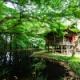 生駒山の麓のH神社『ある事件が切っ掛けで天涯孤独になった話』