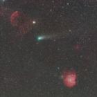 『自宅庭で捉えたジャコビニ・ツィナー彗星&モンキー&クラゲ星雲コラボ』の画像