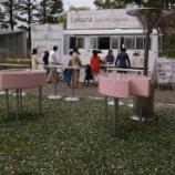 『2012桜 東京ミッドタウン、六本木ヒルズ〜満開時のために』の画像