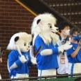 【画像】ワイ、西武のSAVE LIONSデーに行く(9/23L-E)