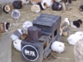 【悲報】モルモット牧場さん、流行に便乗してしまう…