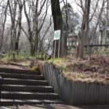 『カタクリの花;東大和市・武蔵村山市』の画像