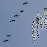『フォト短歌「五感のままに」』の画像