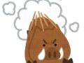 【画像】福岡市のイノシシ出没 楽しそうだと話題になってしまう