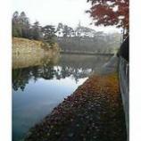 『落葉』の画像