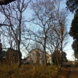 『山武市横田 森の小路を抜けた先の小さな分譲地』の画像