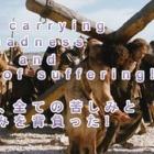 『難しい選択と、平和を願う動画。』の画像