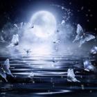『🌝今日は満月✨ご依頼いただいた方に特別なお祈りをさせていただきます!』の画像