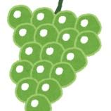 『シャインマスカットとかいう無限に食い続けられる神の果物』の画像