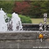 『公園のエッセンス』の画像