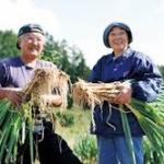 農業人口、5年で51万人減…農民の減少に歯止めがかからず