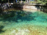 『透き通るエメラルドグリーンの水~別府弁天池を巡る』の画像