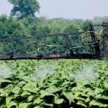 『ジカンバ猛毒除草剤』の画像