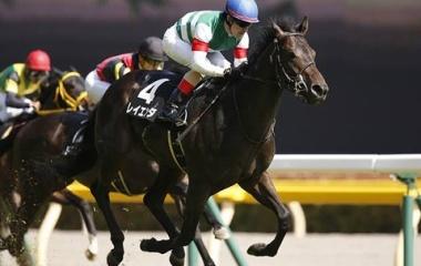 『エプソムカップ2020【有力馬分析】〜秋のG1戦線に弾みをつける馬とは〜』の画像
