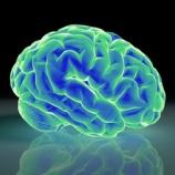 『未来のマッスルセラピー(筋肉治療)【吉野マッスルセラピストスクール 筋膜・トリガーポイント勉強会】』の画像