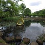 『5月の東大和の公園Ⅱ』の画像