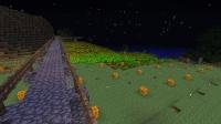 大小麦畑の夢、叶えます (10)