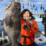 『12月21日 釣果 スーパーライトジギング SLJ マゾイの乱舞 最大は44センチ』の画像