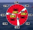 漁師「カニだ!カニだ!カニだ!」←年収1000万