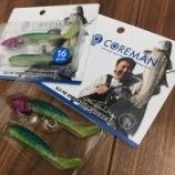 『COREMAN / VJ-16 バイブレーションジグヘッドに噂の限定色!?』の画像