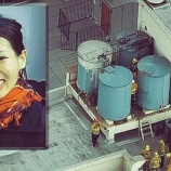 『世界の未解決事件 エリサ・ラムのエレベーター内での不可解な行動』の画像