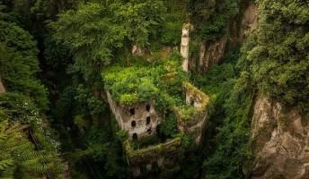 やっぱり自然は強かった!廃墟となり植物に飲み込まれた場所30選