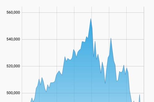 僕が最高値でBitcoin買った直後に大暴落してワロタ...ワロタ...お金返して(´;ω;`)のサムネイル画像