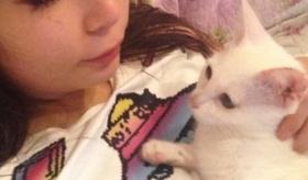 【日本の芸能人】   しょこたん(中川翔子) が猫と遊んでいる画像が公開されたぞ!  海外の反応