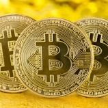 『【ビットコイン】バイ&ホールドのアドレス急増で流動性のリスク高まり、2020年下半期に大暴騰する!!』の画像