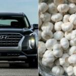 【韓国】米国で現代自動車SUV購入者から「車内がニンニク臭い!」と苦情が殺到