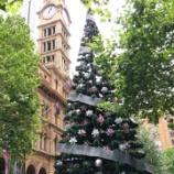 『Merry Christmas in SYDNEY シドニーのクリスマス』の画像
