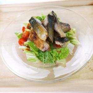 シンプルながらも美味しい♪鯖の塩焼きサラダ