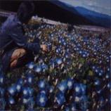 『今週の1枚(8)「朝顔/レミオロメン」』の画像