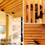 『猫寝天井』の画像
