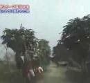 トラがバイクの2人追い掛ける、動画撮影