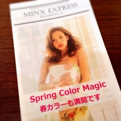 MINX EXPRESS