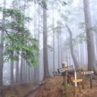 『丹澤山』の画像