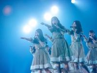 日向坂46、無観客ライブの視聴チケットを4億円近く売ってしまうwwwwwwwww