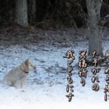 『冥福祈る』の画像