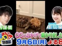 【日向坂46】影山優佳『世界まる見えテレビ特捜部』ソロ出演決定!!!!!!